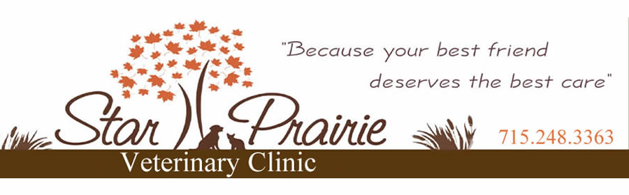 star_prairie_veterinary_clinic